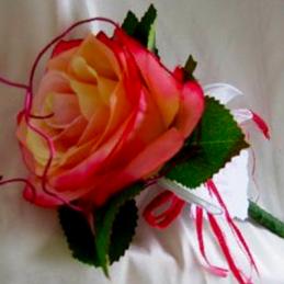 Mega rose dégradée